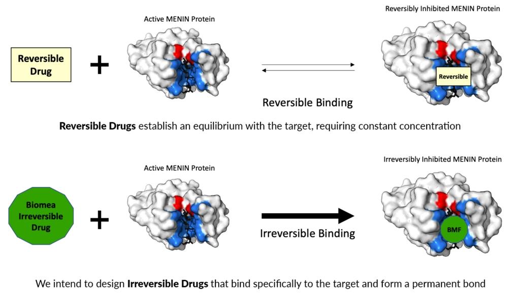 Irreversible vs Reversible Inhibitors